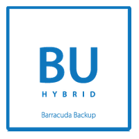 Barracuda Backup Server 1091 - 1 Month Replication to AWS